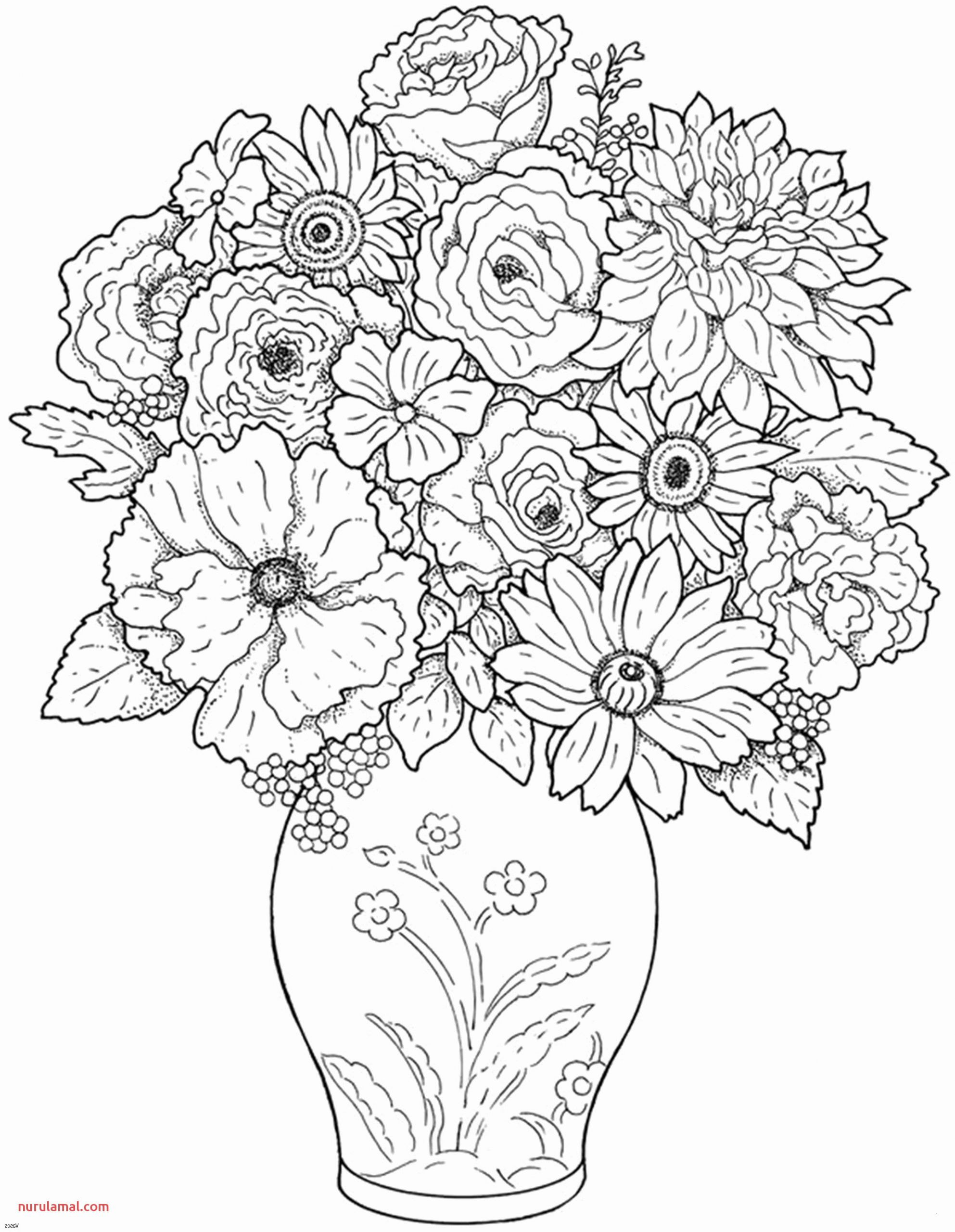 coloring page for january unique photos cactus vase luxury cactus coloring page lovely coloring best of coloring page for january