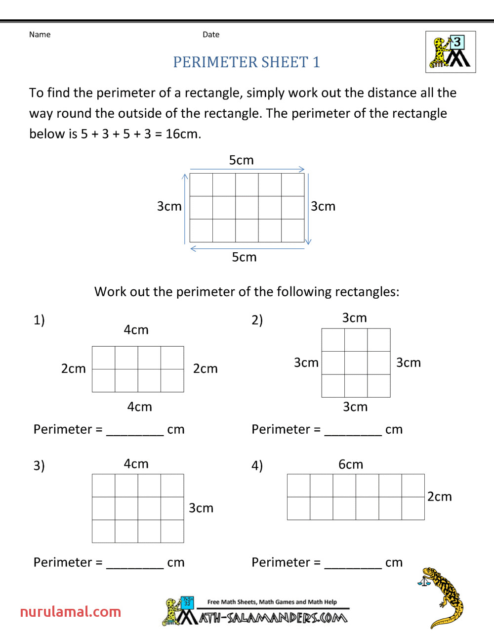 3rd and 4th Grade Math Worksheets & 4th Grade Science