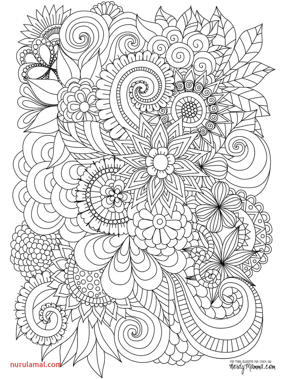 51 Best Adult Coloring Images