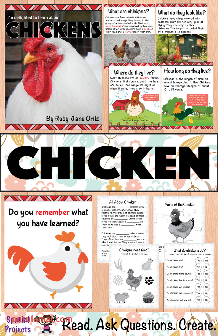 All About Chickens Nonfiction Unit Chicken Life Cycle