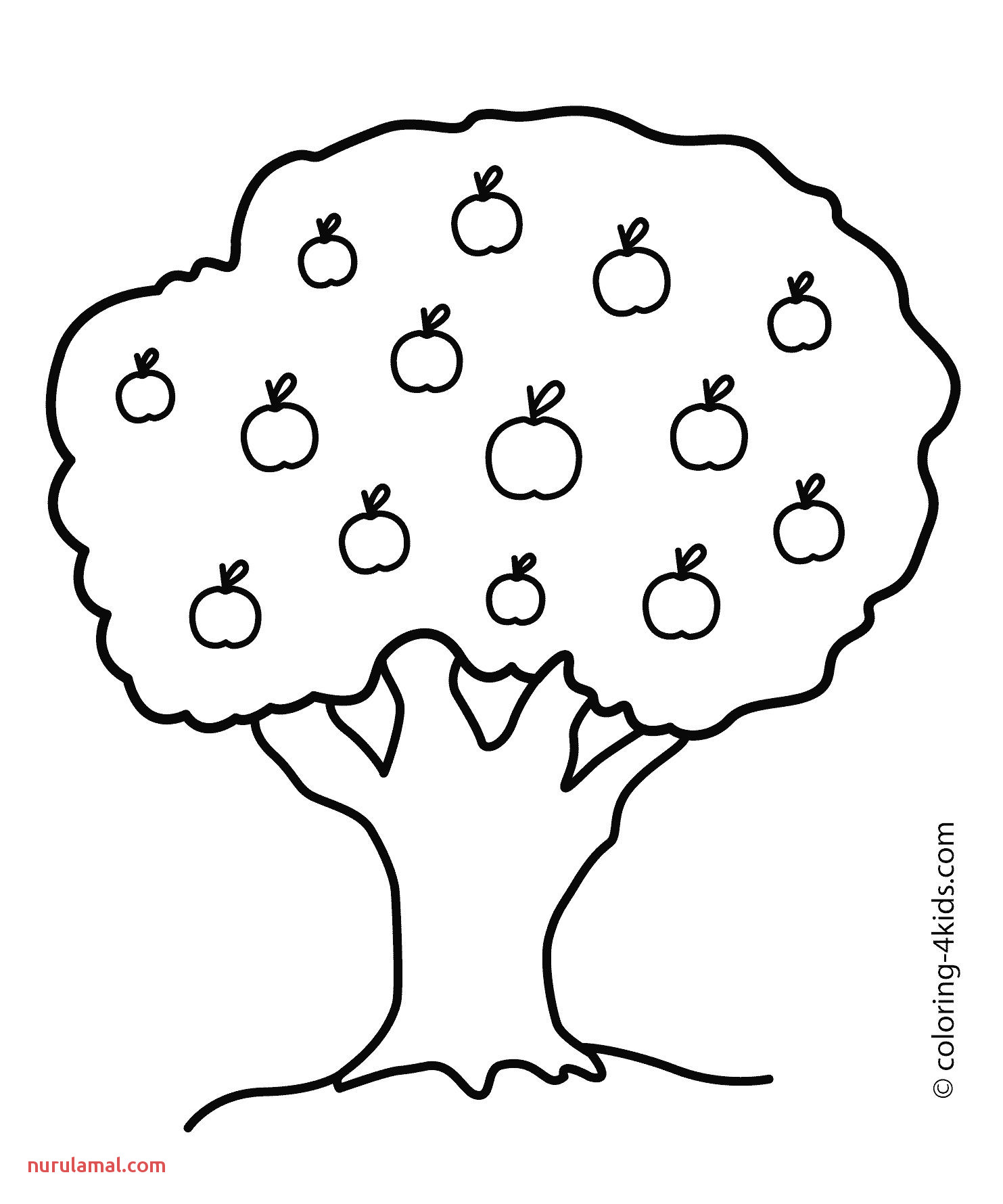 Apple Picture for Colouring Coloring Pages Promise Tree