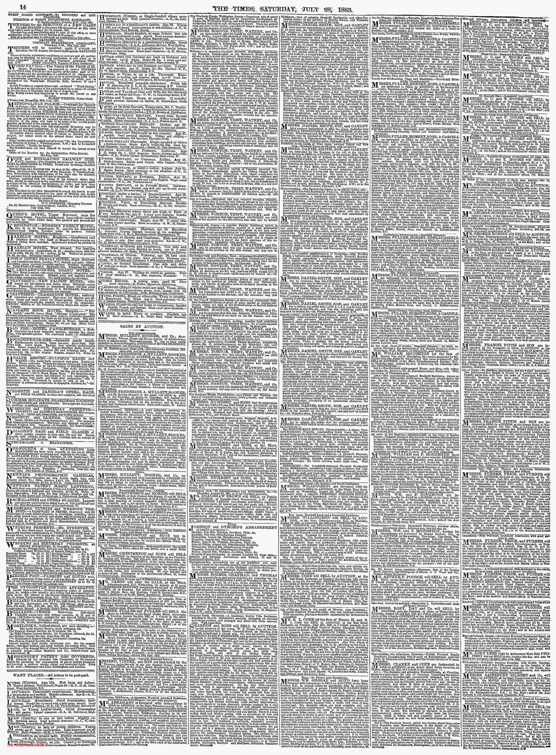 Archive Page Viewer July 28 1883