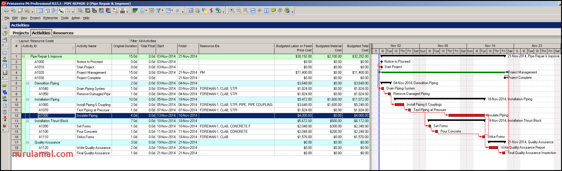 Assigning Fixed Price Costs to Activities In Primavera P6