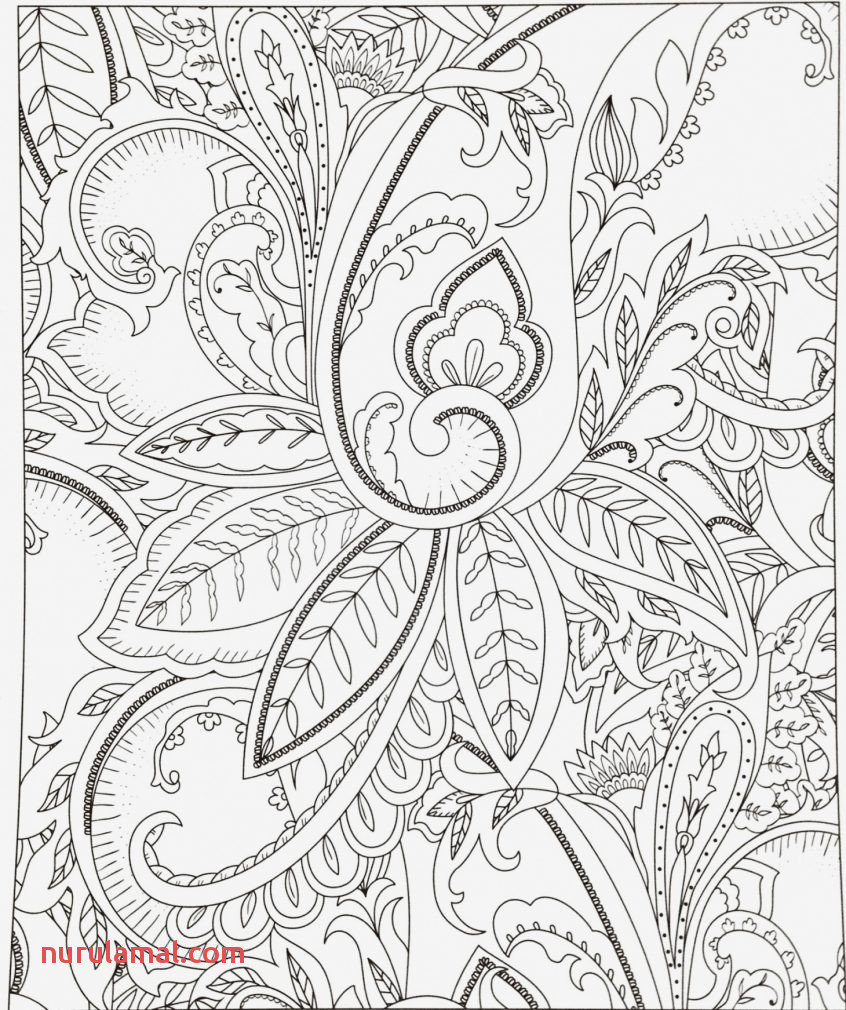 Beautiful Free Printable Coloring Math Worksheets for