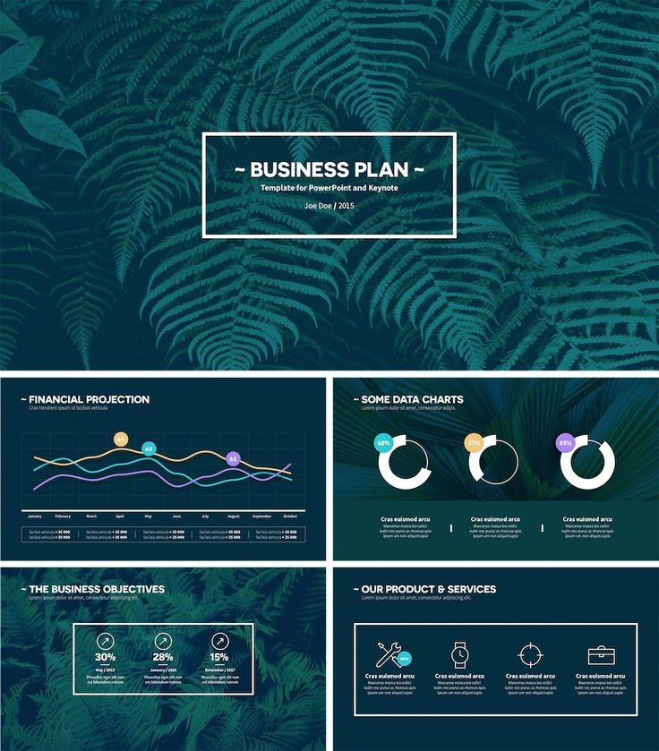 Best Business Plan Presentation Ideas On Pinterest