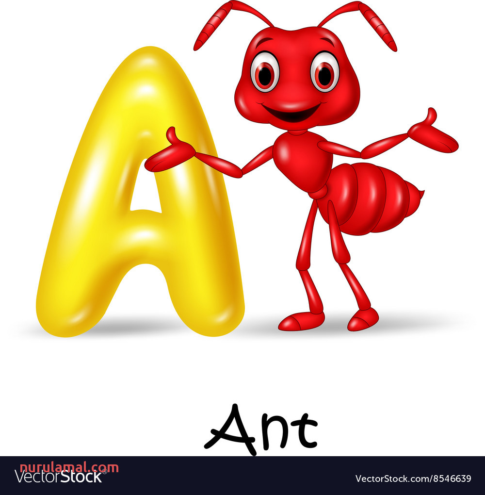 Cartoon A Of Letter for Ant Vector Image