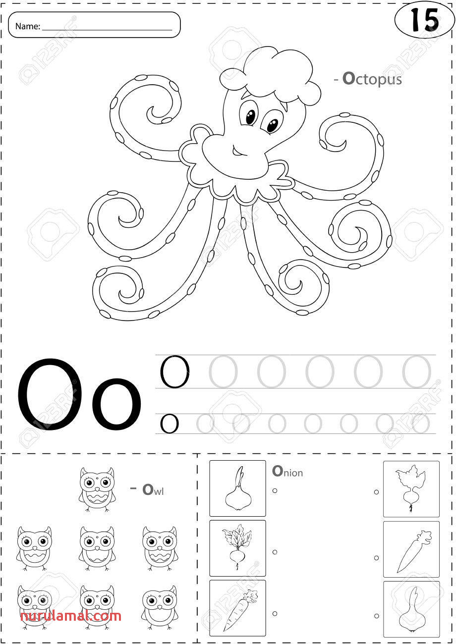 Cartoon Octopus Owl and Onion Alphabet Tracing Worksheet Writing