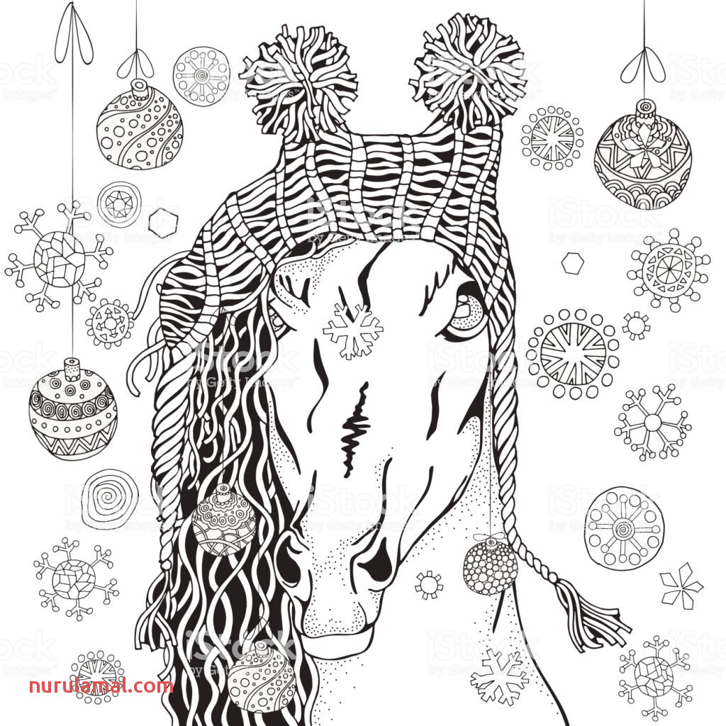 Coloring Book Coloring Book Page for Adult and Children