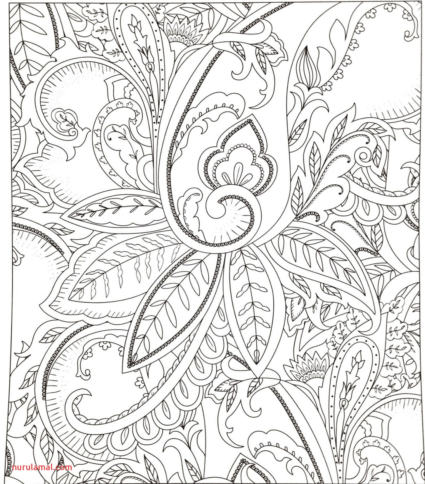 Coloring Book Luxury Flower Coloring Pages for Adults