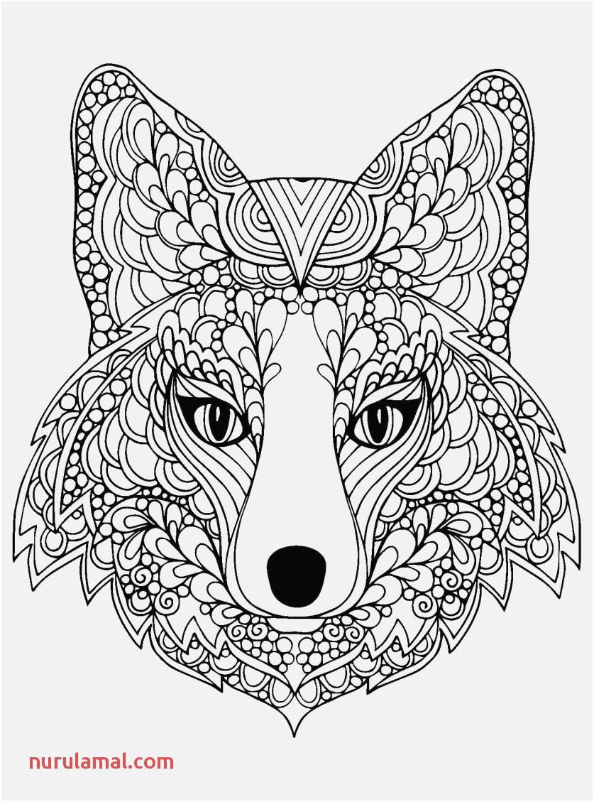 Coloring Pages for Kids Free Footage Parrot Colouring Pages