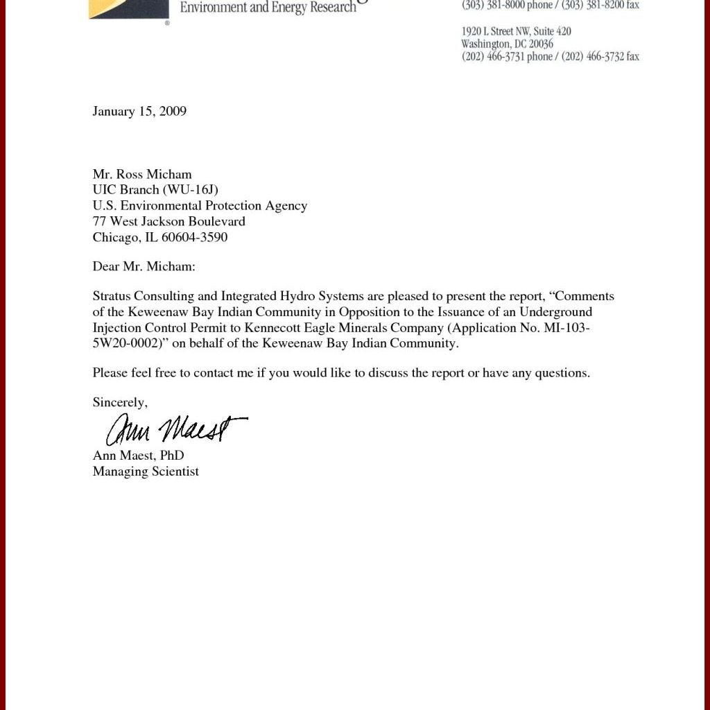 Dandy Professional Business Letter Template Letter