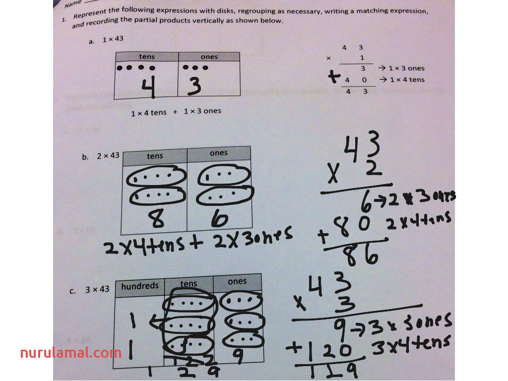 Division with Remainders Worksheet Year 5