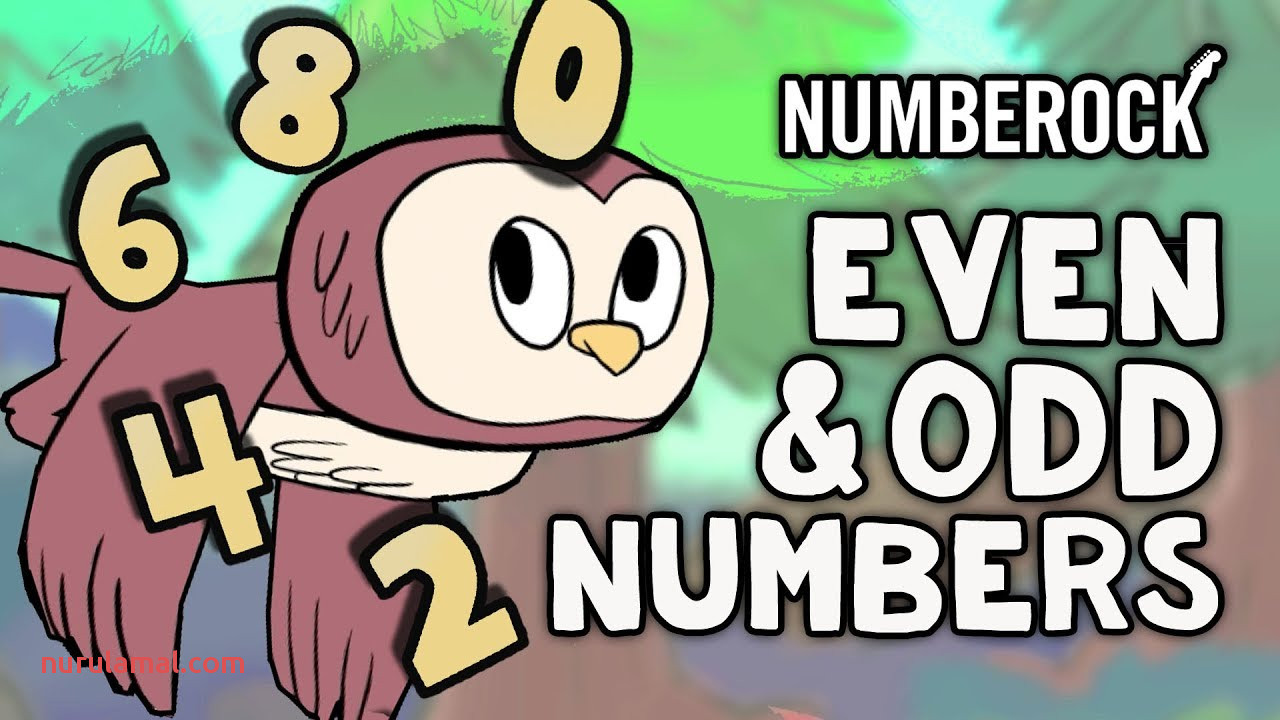 Even and Odd Numbers song for Kids