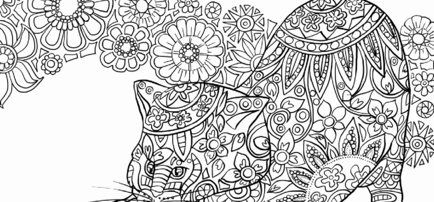 Free Printable Coloring Pages Websites Pusat Hobi