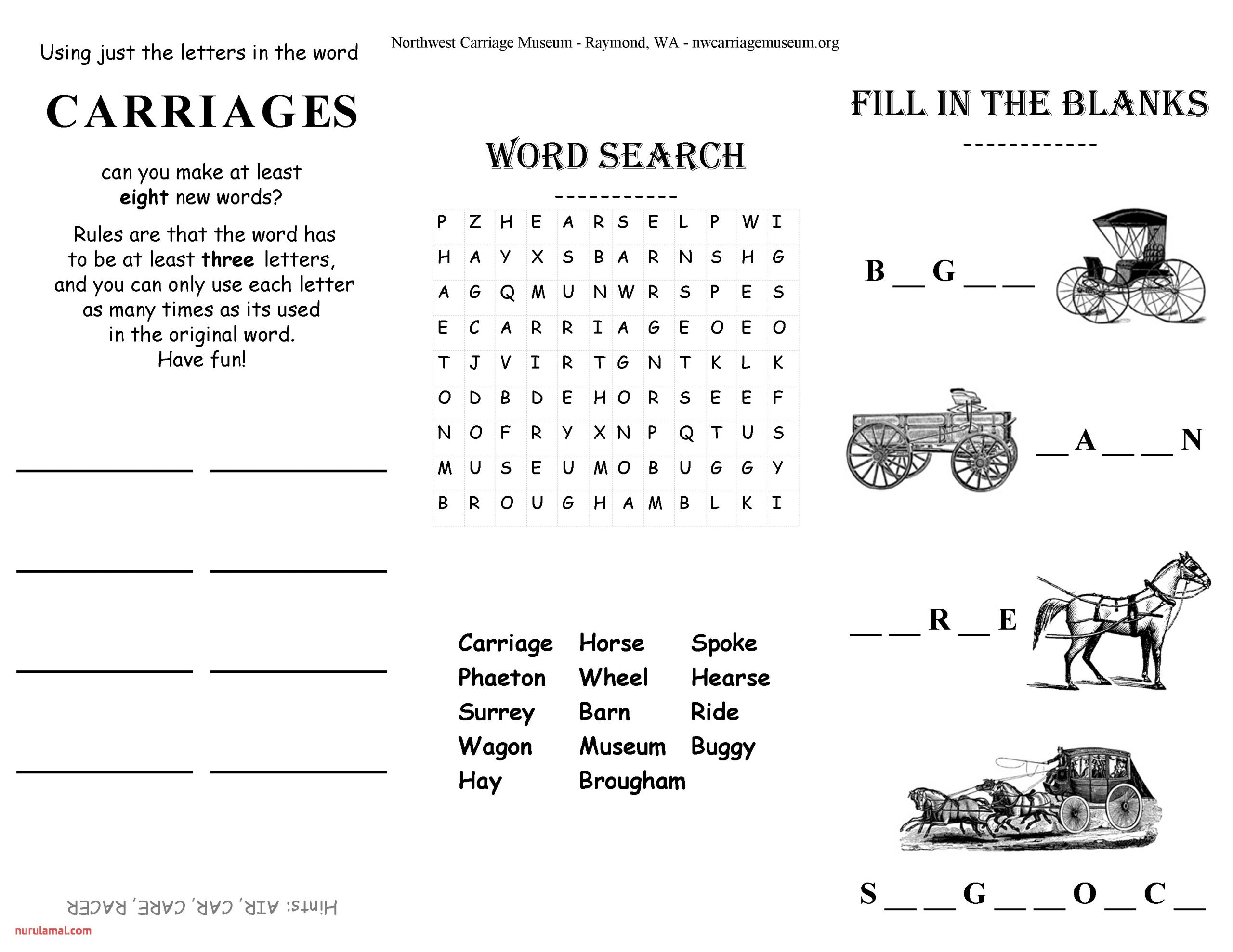 Fun Activity Worksheet Seniors