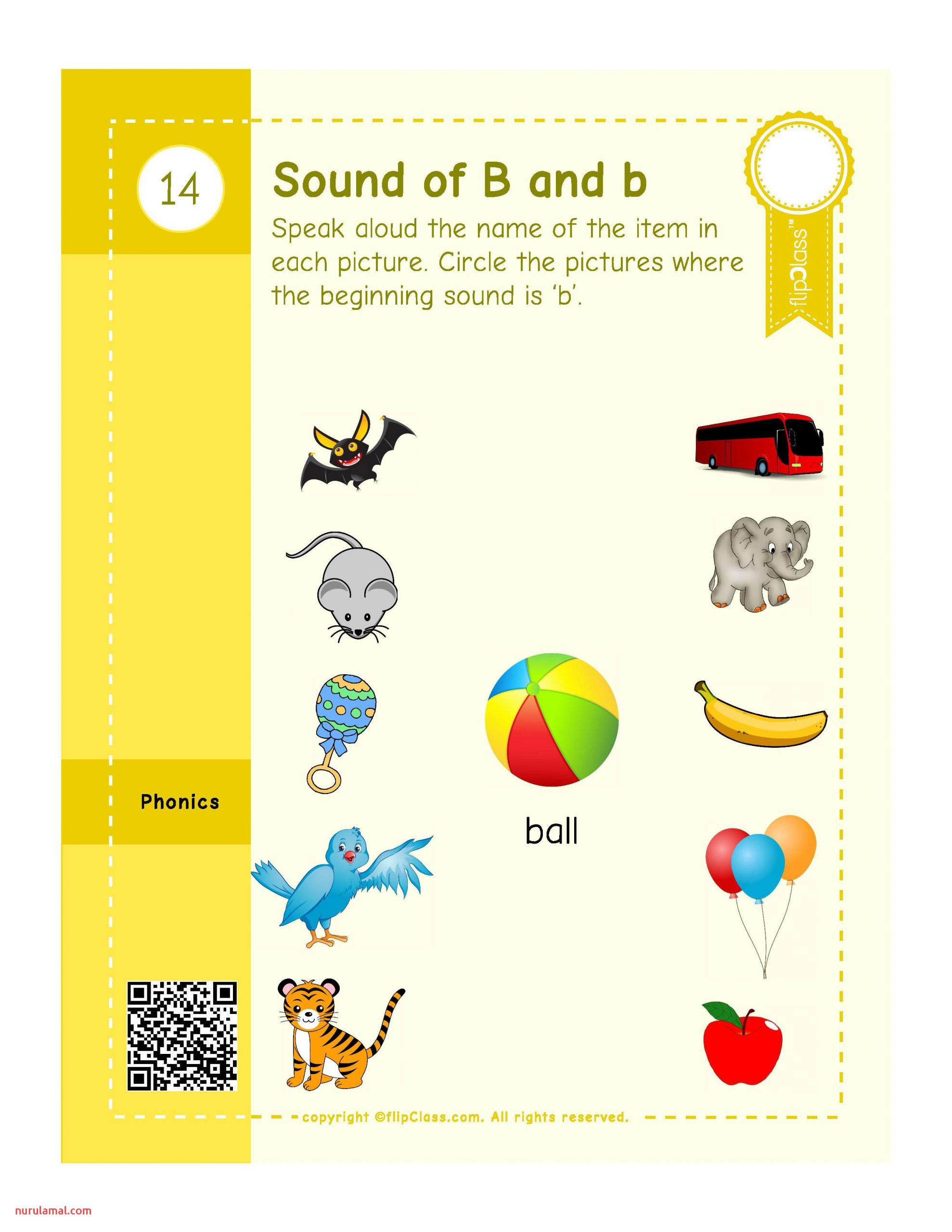 Genius Kids Worksheets Bundle for Lkg Kg I and