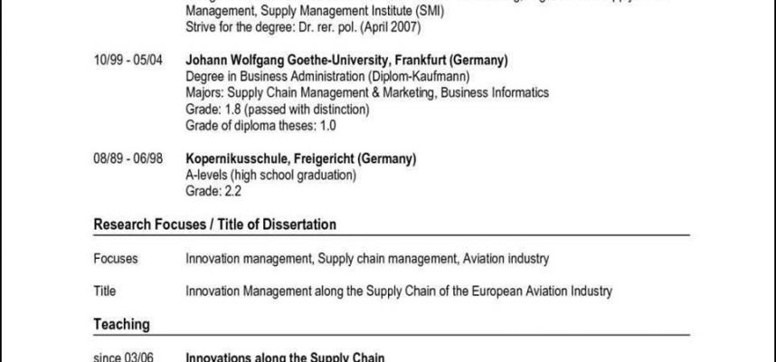 German Resume Template Free Samples Examples Format