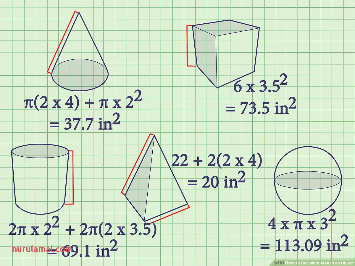 How to Calculate area Of An Object 7 Steps with