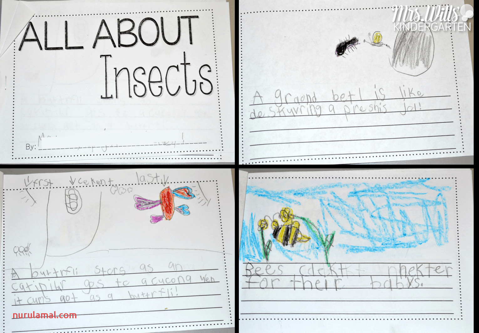 All About Insects 3