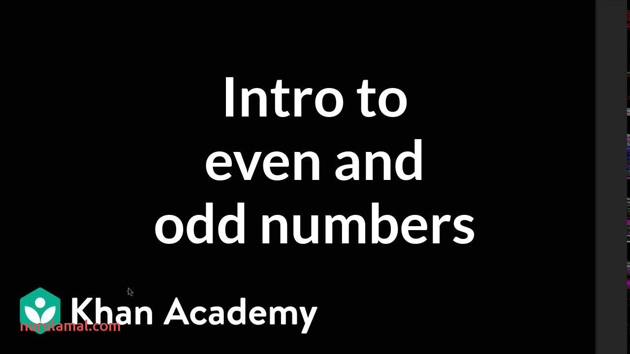 Intro to even and Odd Numbers Video