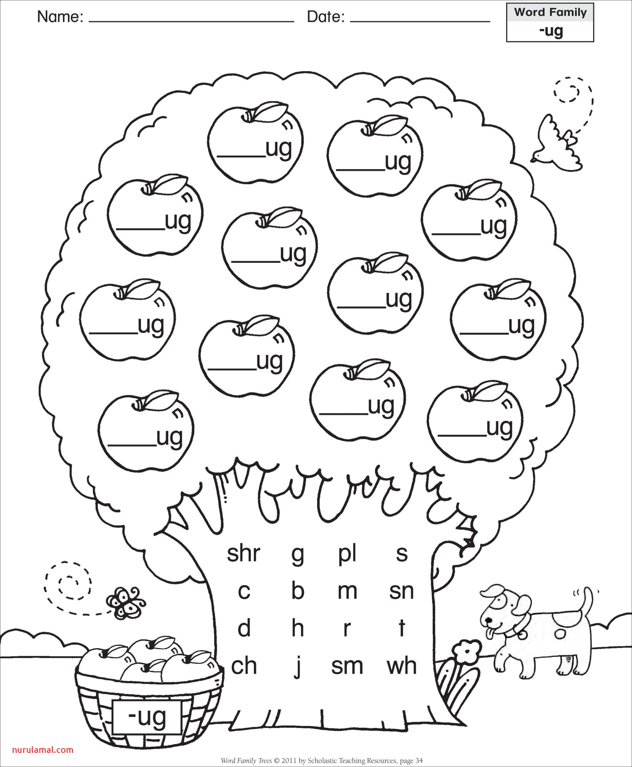Kindergarten Worksheets Math Equation solver with Steps