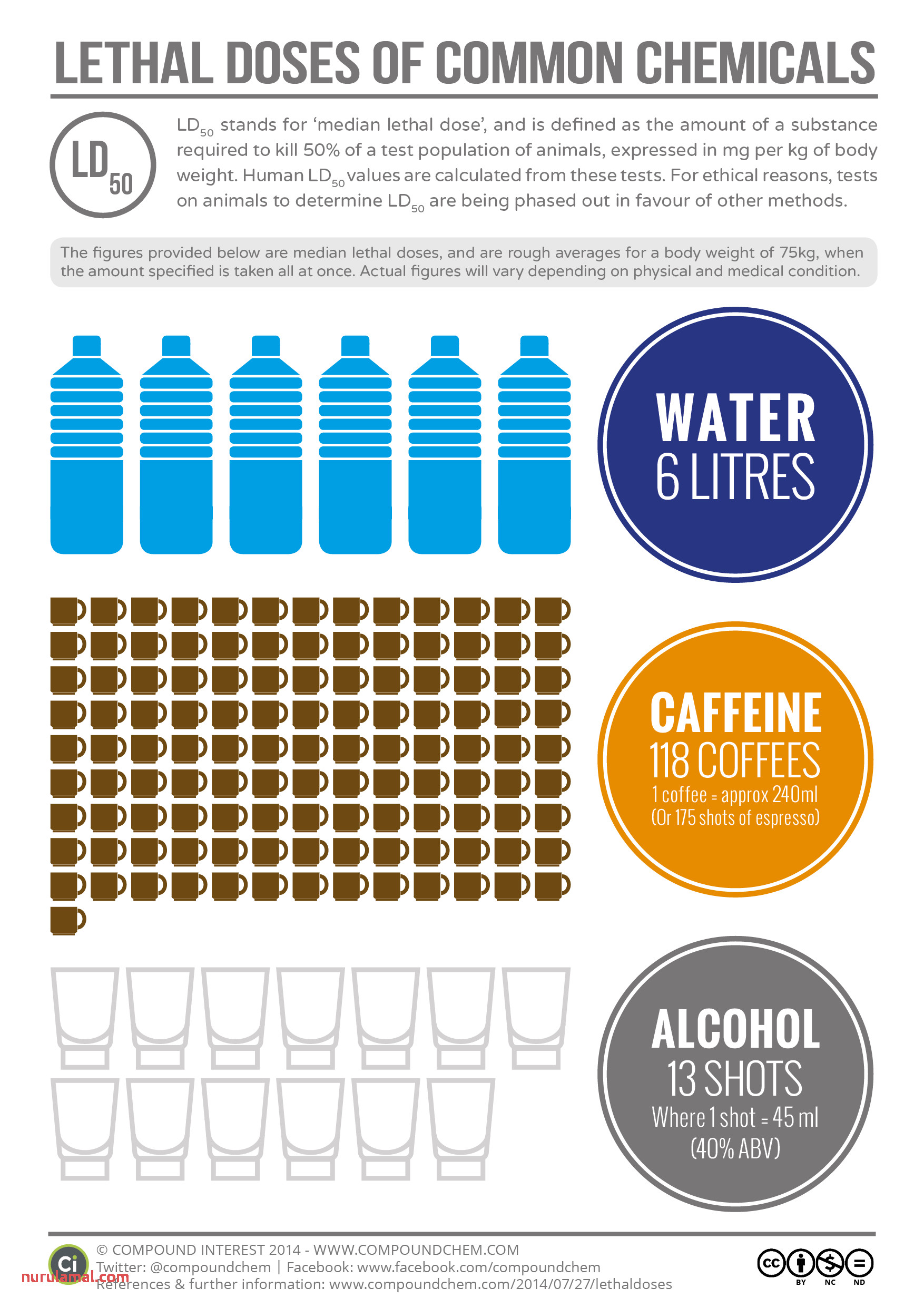 Lethal Doses Of Water Caffeine and Alcohol – Pound Interest