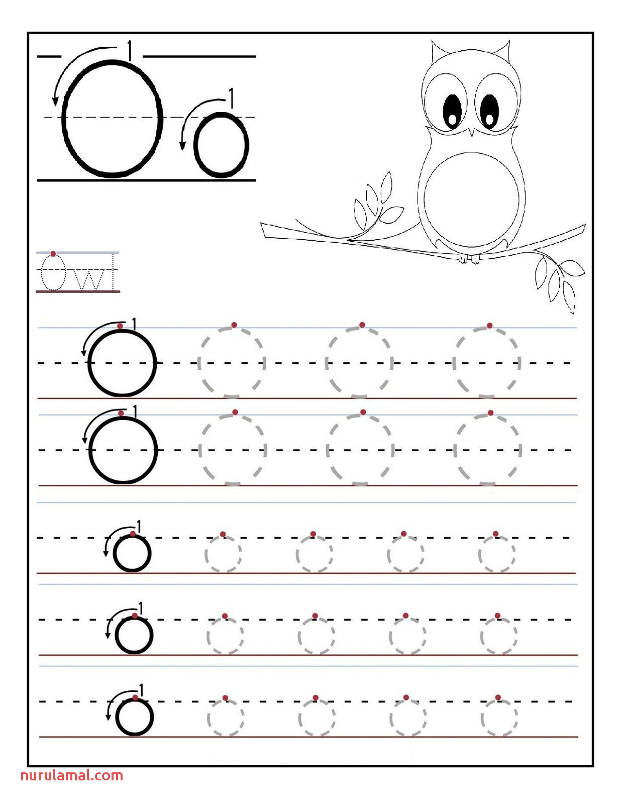 Letter O Worksheet Free