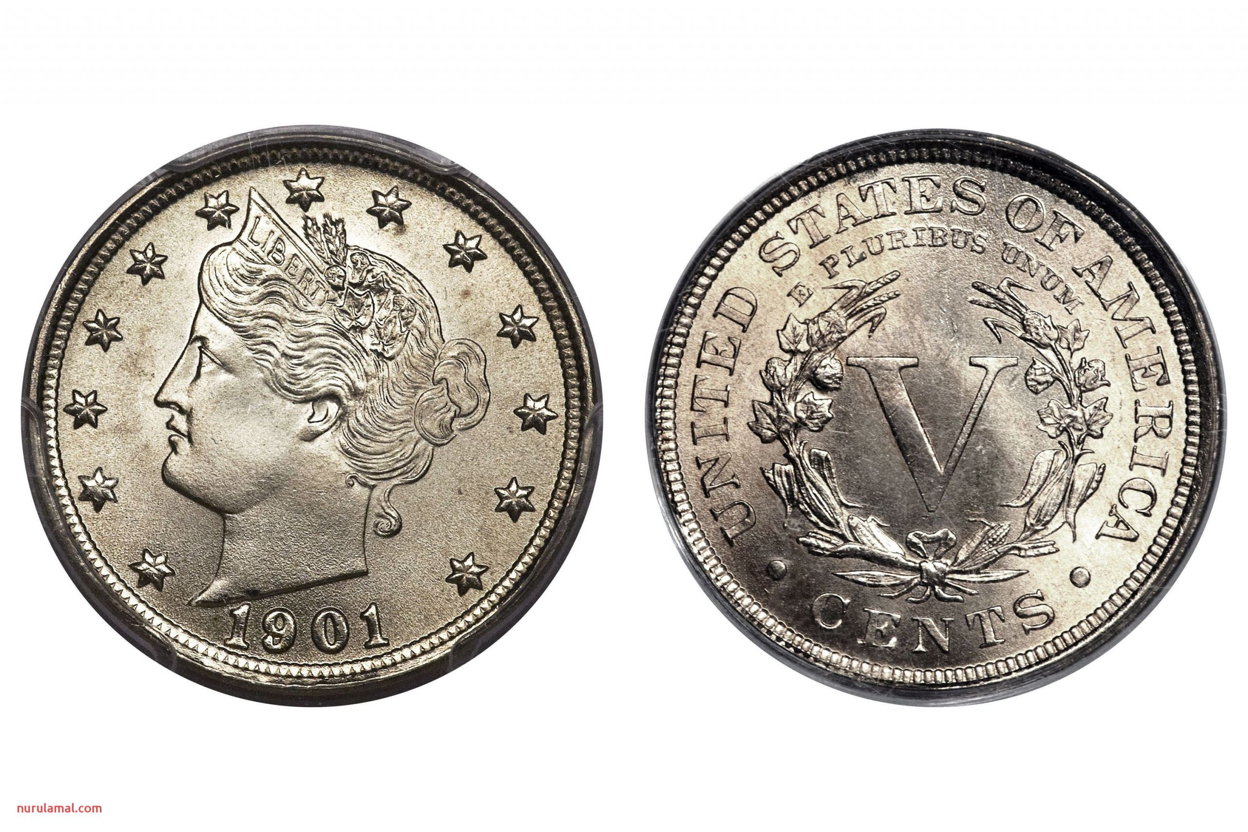 "Liberty Head ""v"" Nickel Values and Prices"