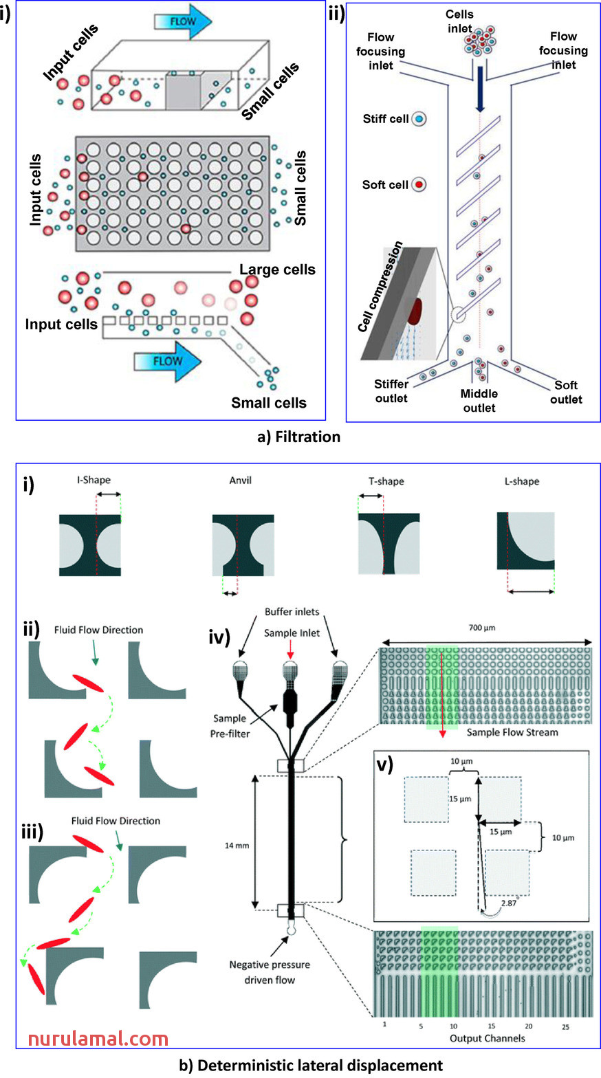 Microfluidic Devices In the Fast‐growing Domain Of Single