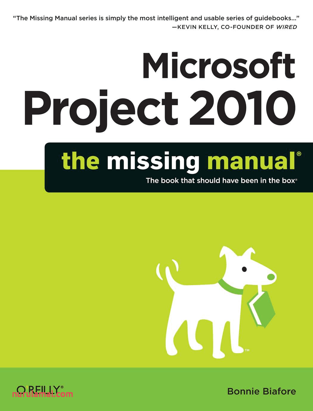 Microsoft Project 2010 the Missing Manual Planejamento