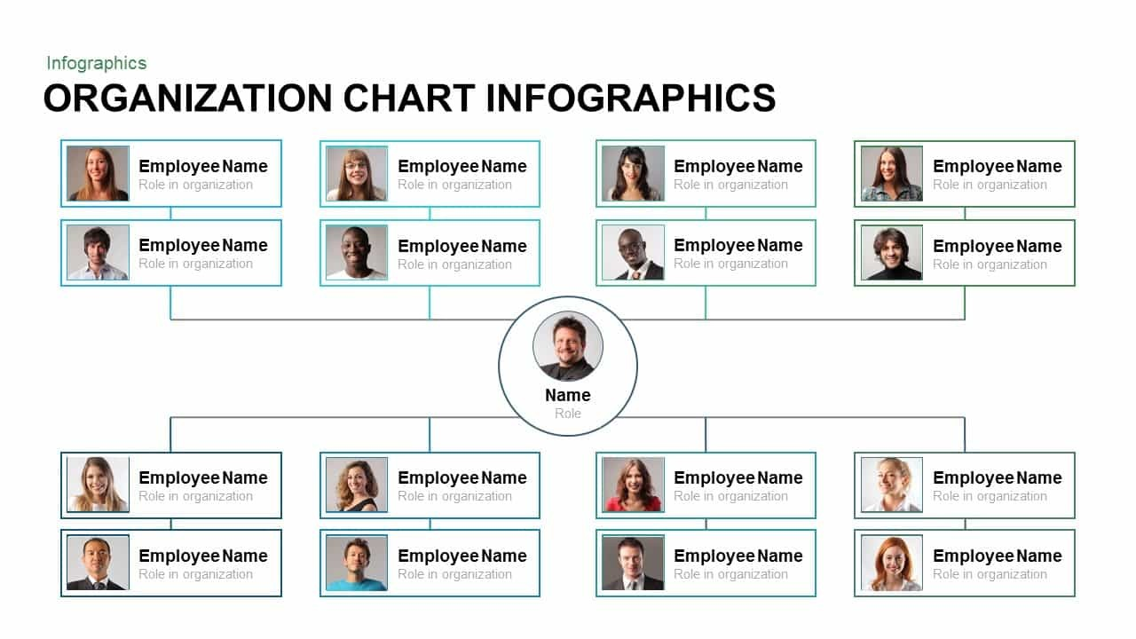 Organization Chart Infographic Template For Powerpoint And