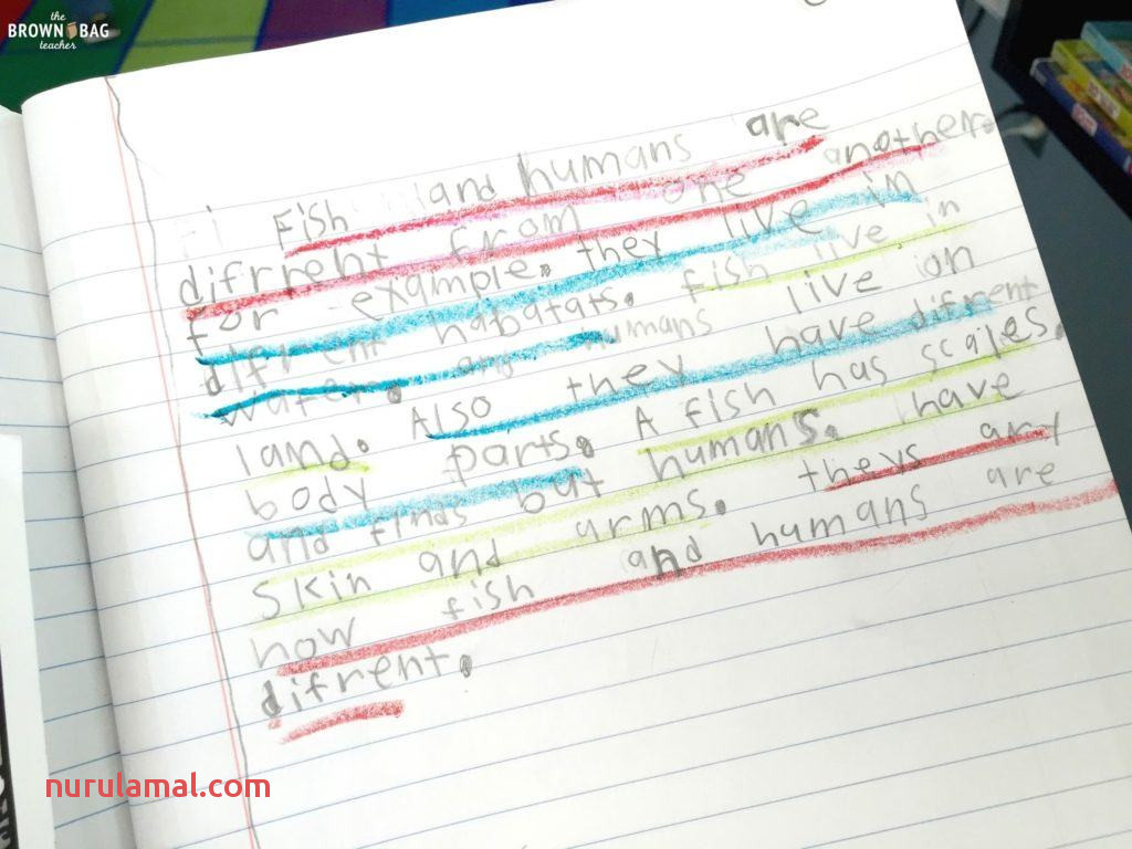 Paragraph Writing In 1st and 2nd Grade the Brown Bag Teacher