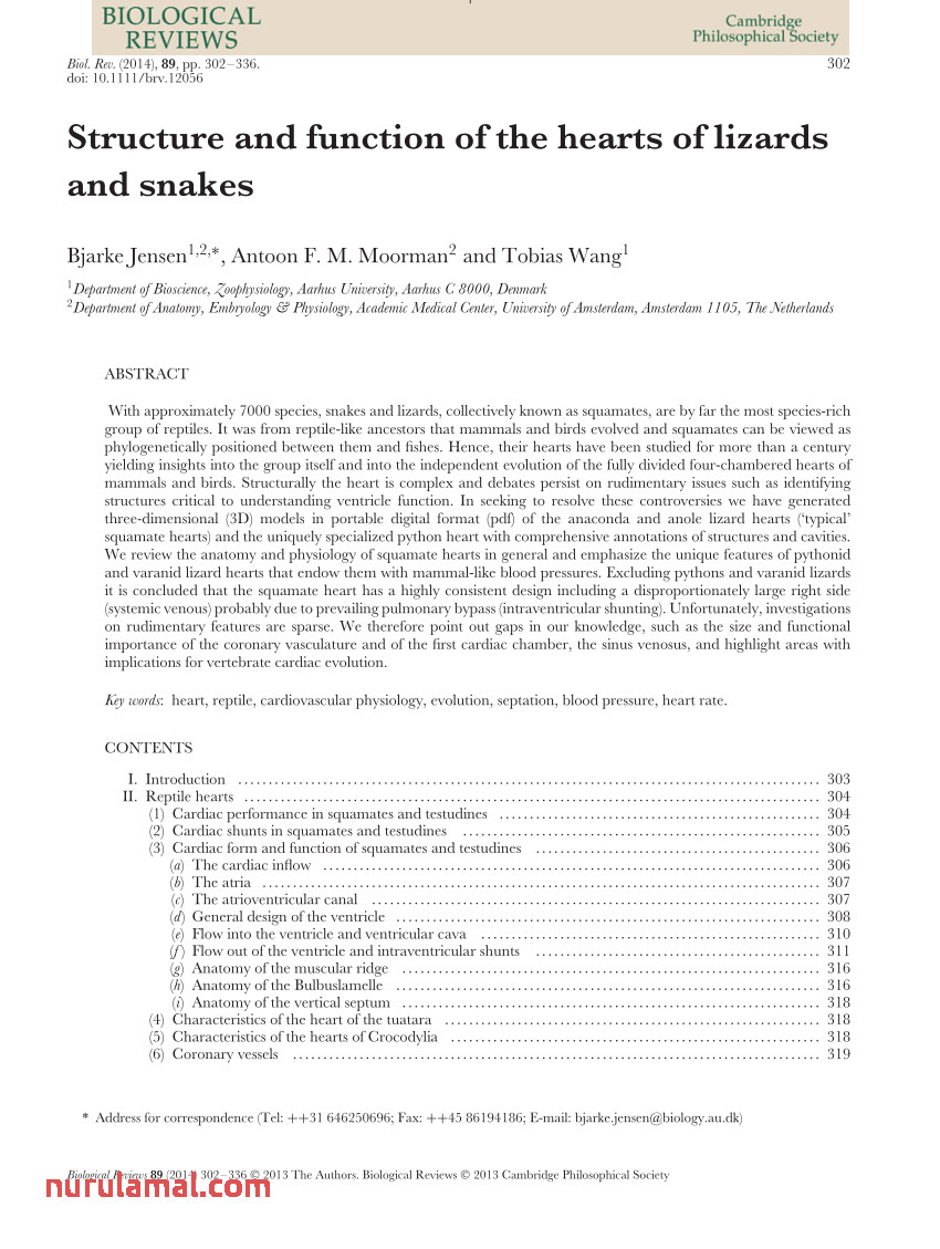 Pdf Structure and Function Of the Hearts Of Lizards and Snakes