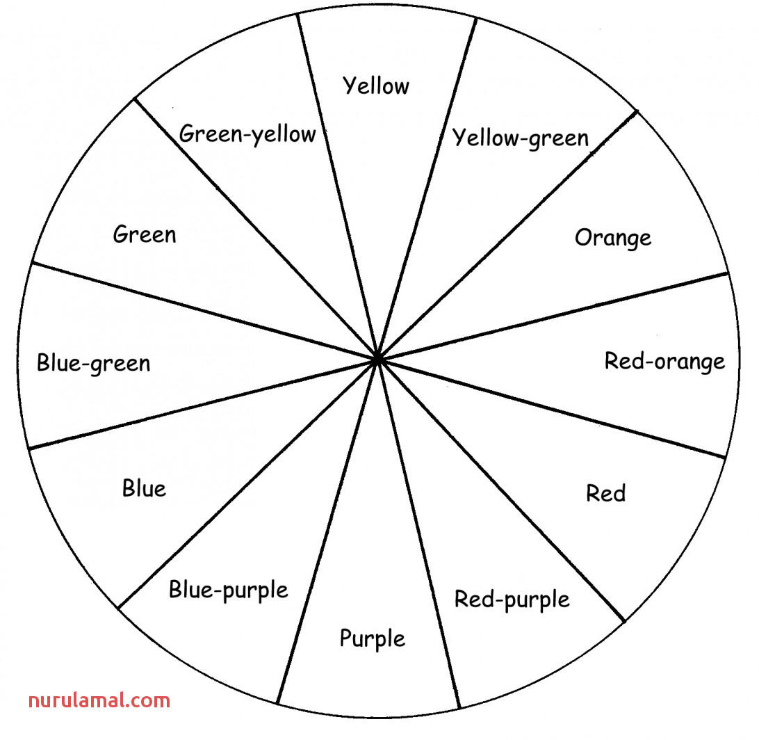 Printable Basic Color Wheel Chart Coloring Page Blank