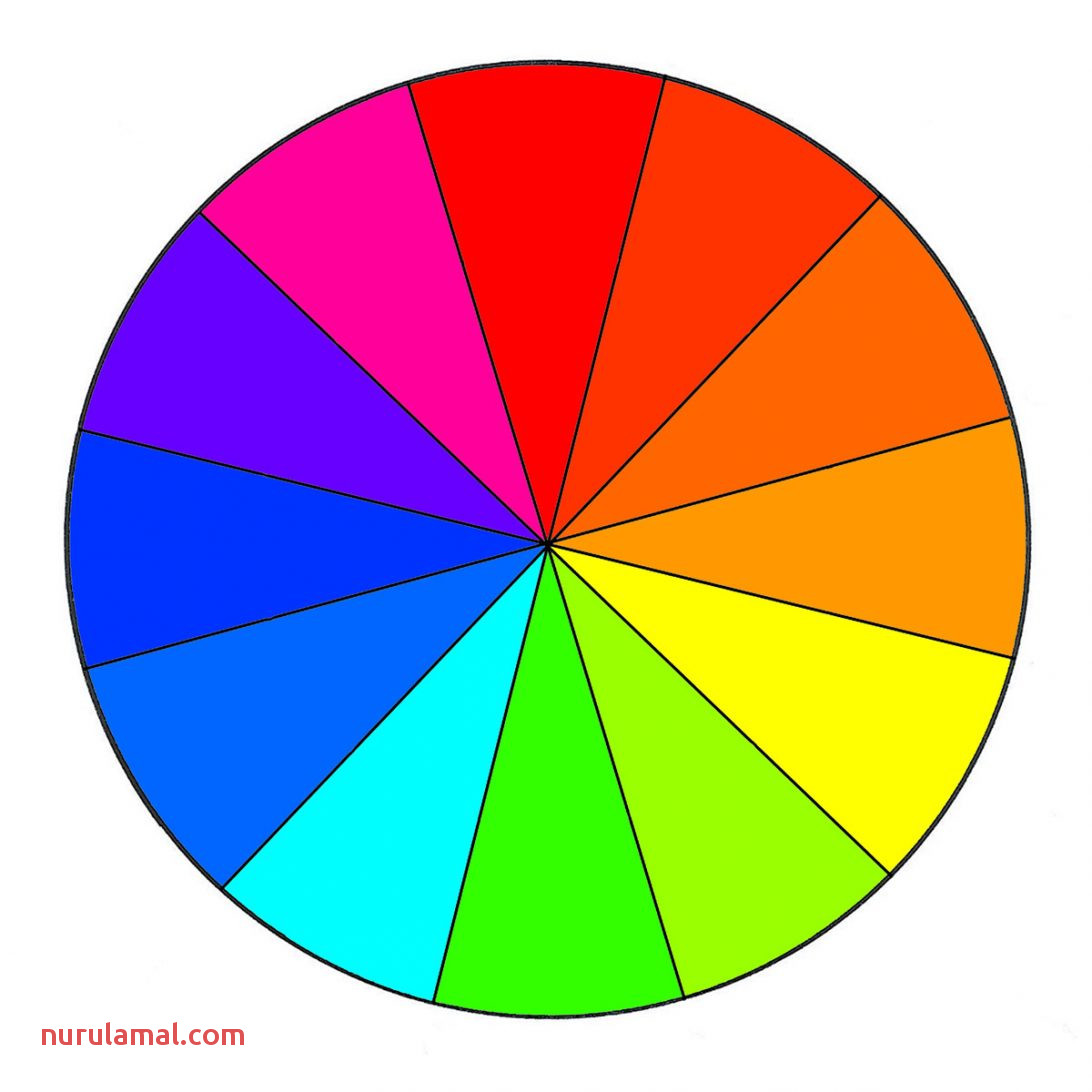 Printable Color Wheel Worksheet Pdf Blank Chart Free Colour