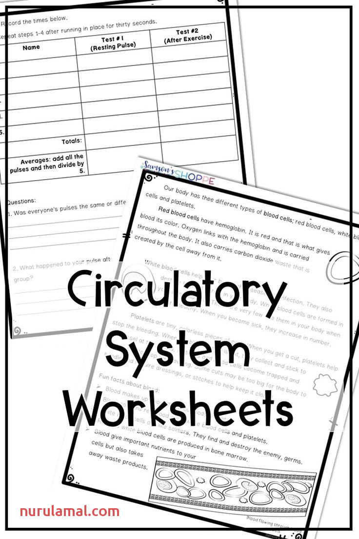 Reading Worskheets Kids Worksheet topic Test Answers