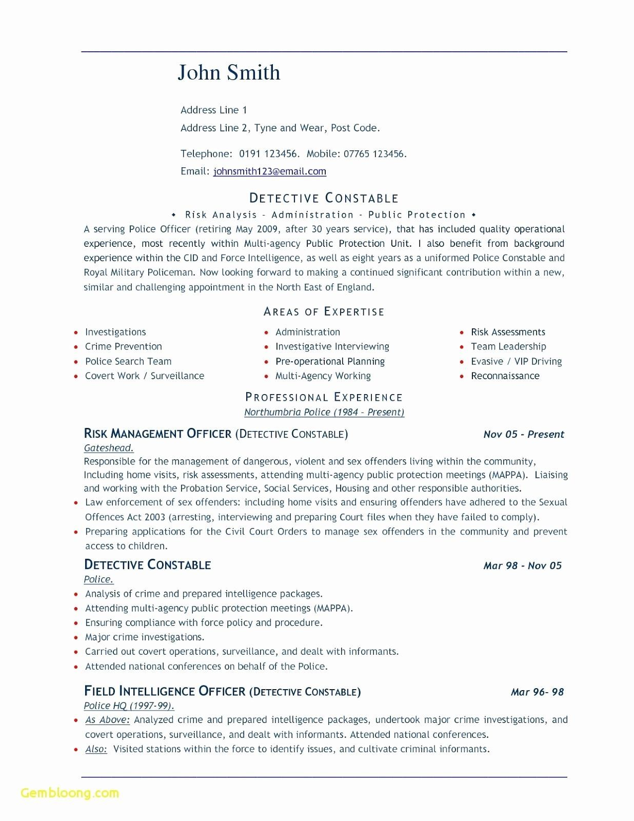 Federal Resume Template Word