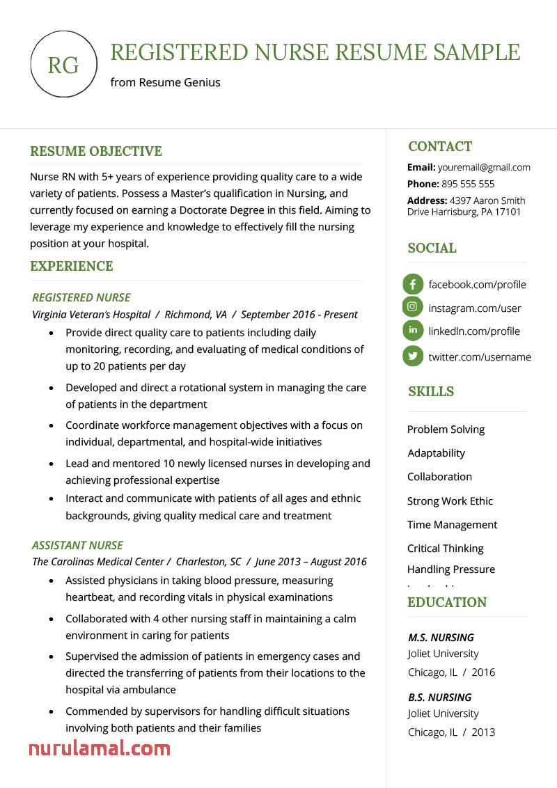 Sample New Nurse Resume Hamled7