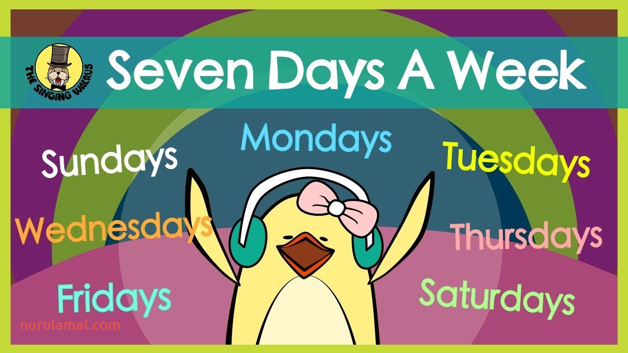 Seven Days A Week Days Of the Week song