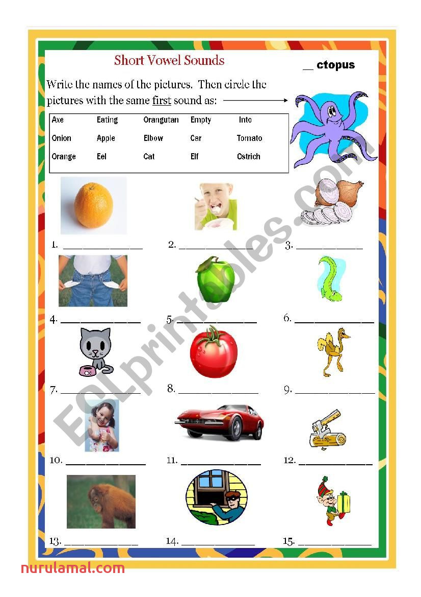 Short Vowel O Esl Worksheet by Dutchboydvh