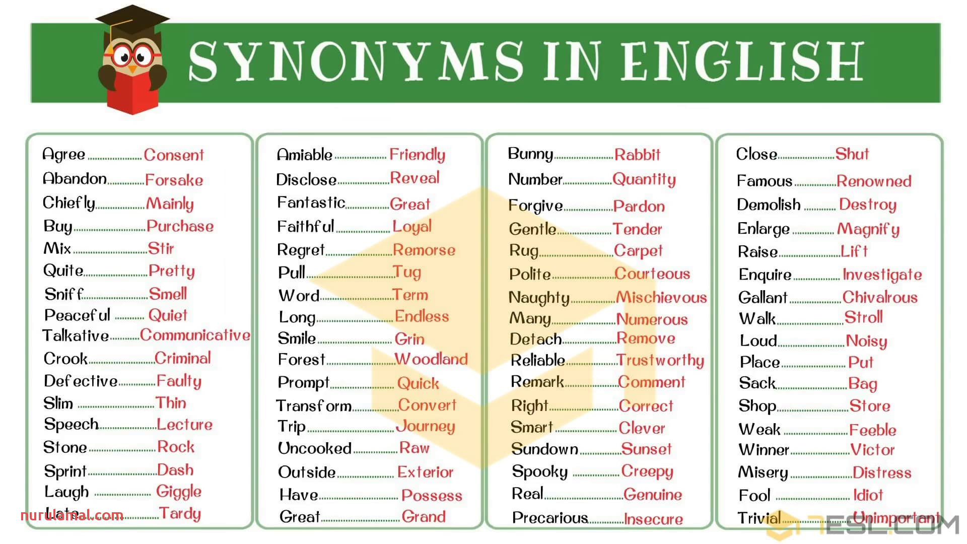 Synonyms 3