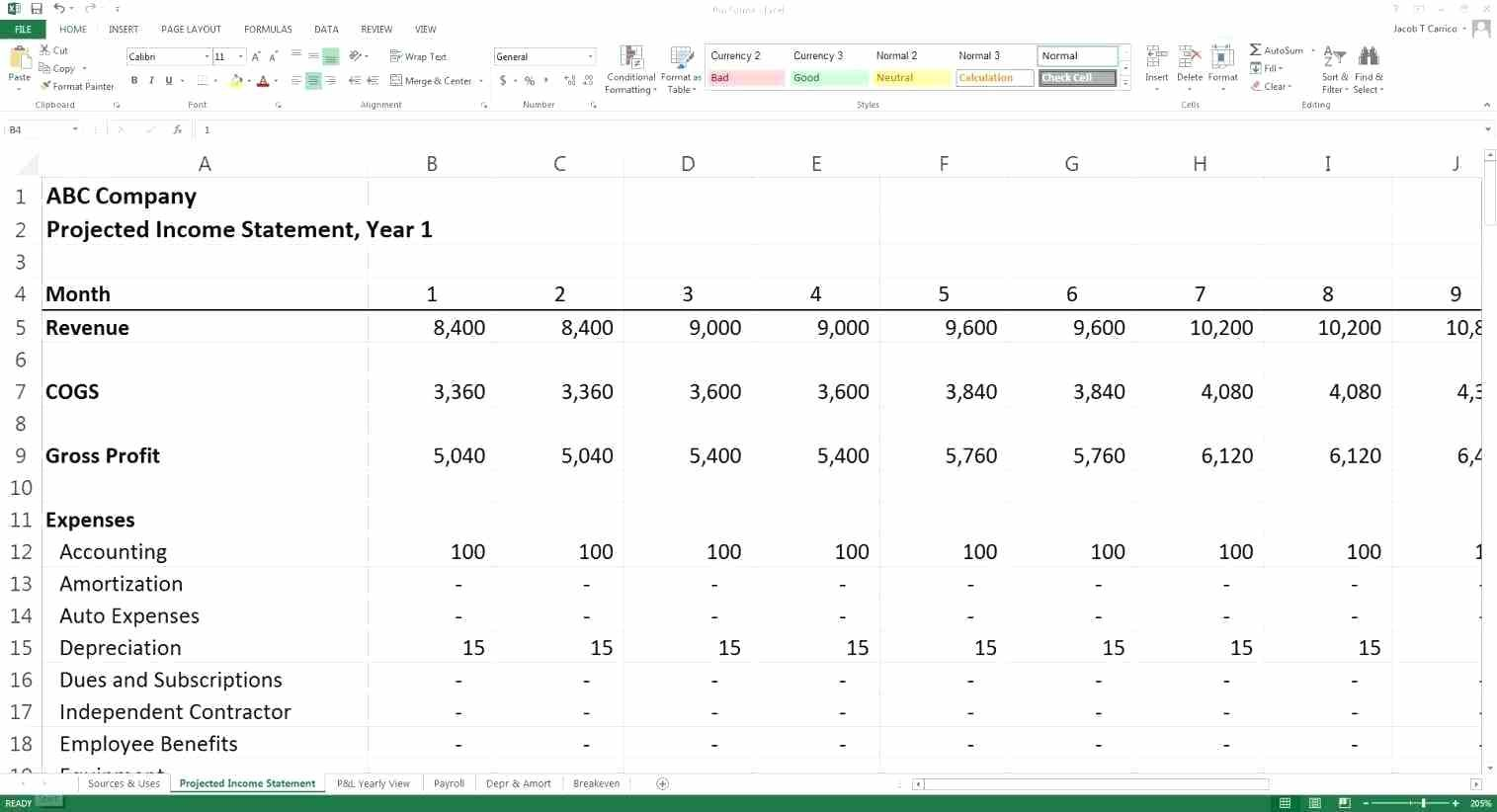 Template Year Cash Flow Projection Template