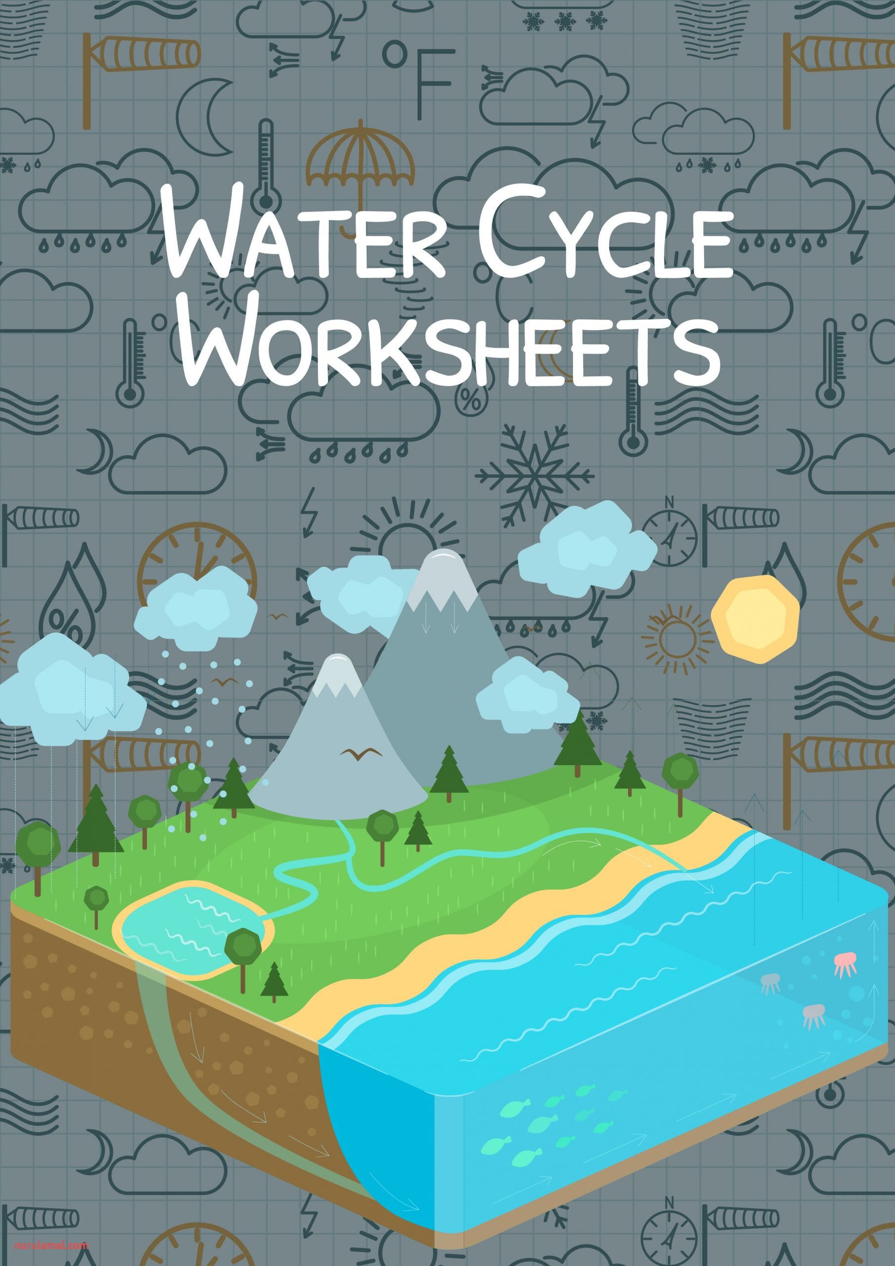 water cycle cover