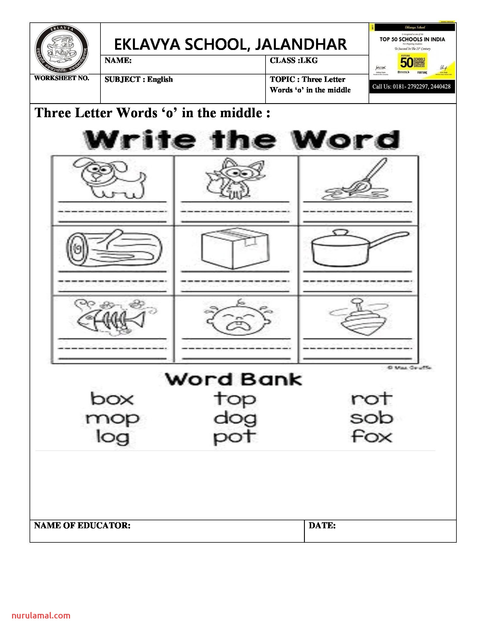 Three Letter Words with O In the Middle Worksheet