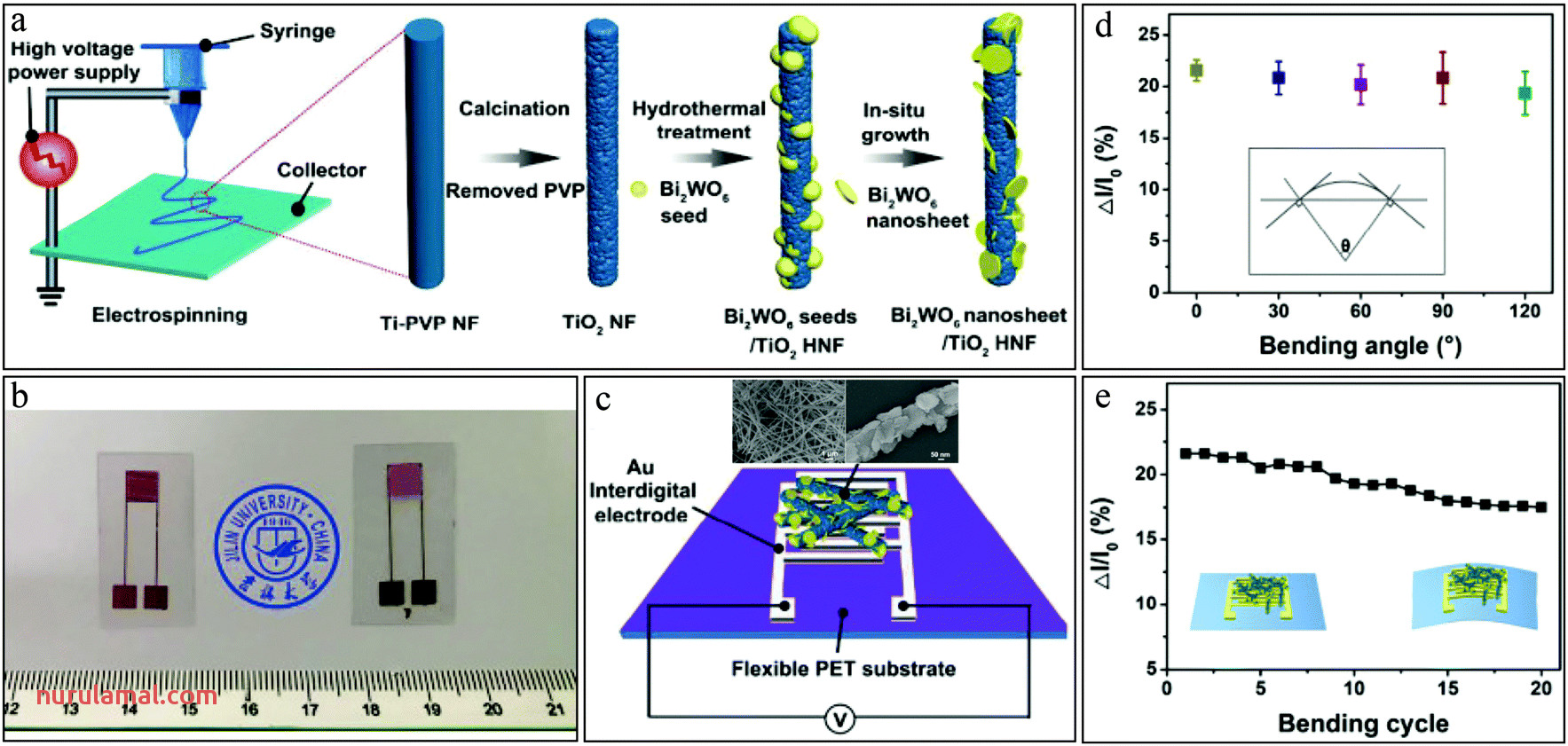 Tunable Nanofibril Heterojunctions for Controlling