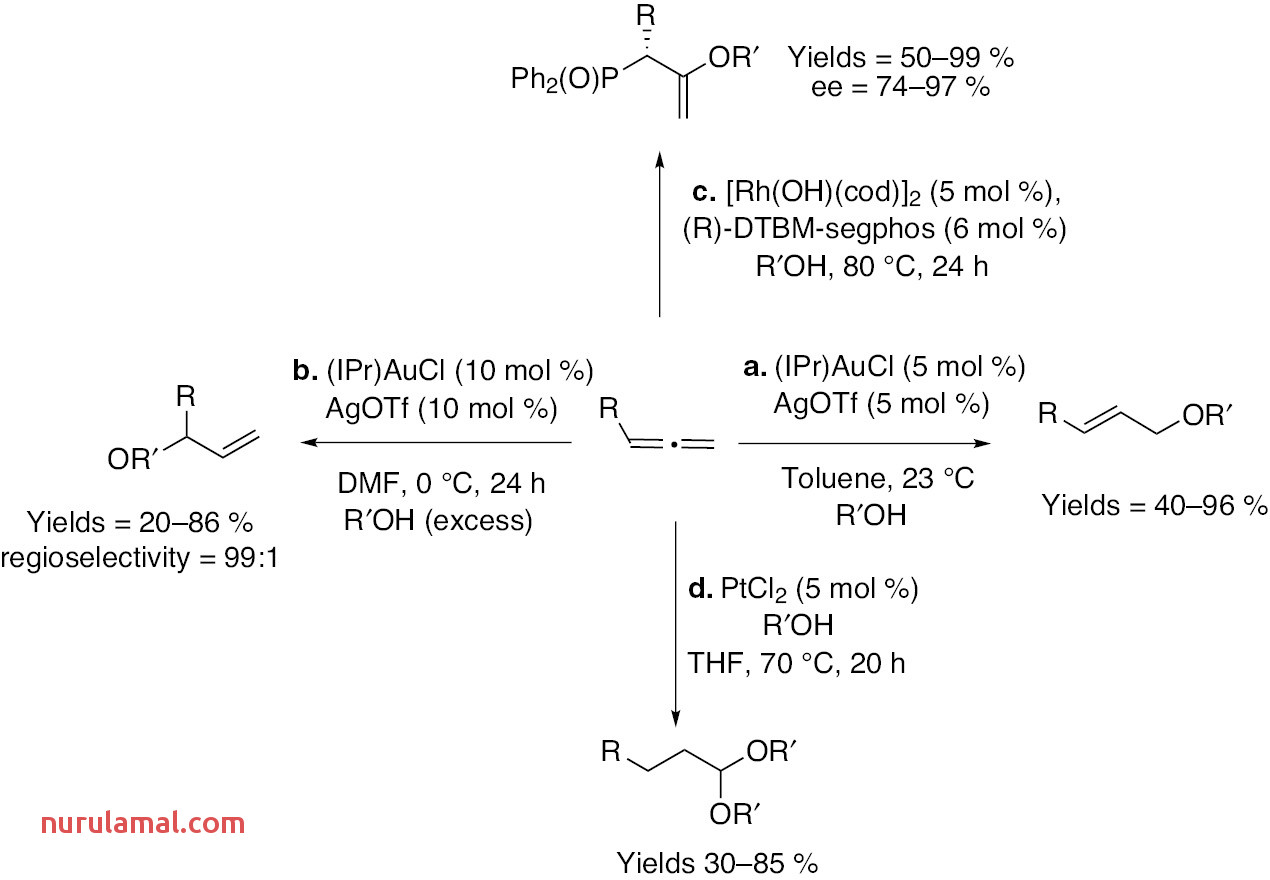 Unravelling Mechanistic Insights In the Platinum Catalysed