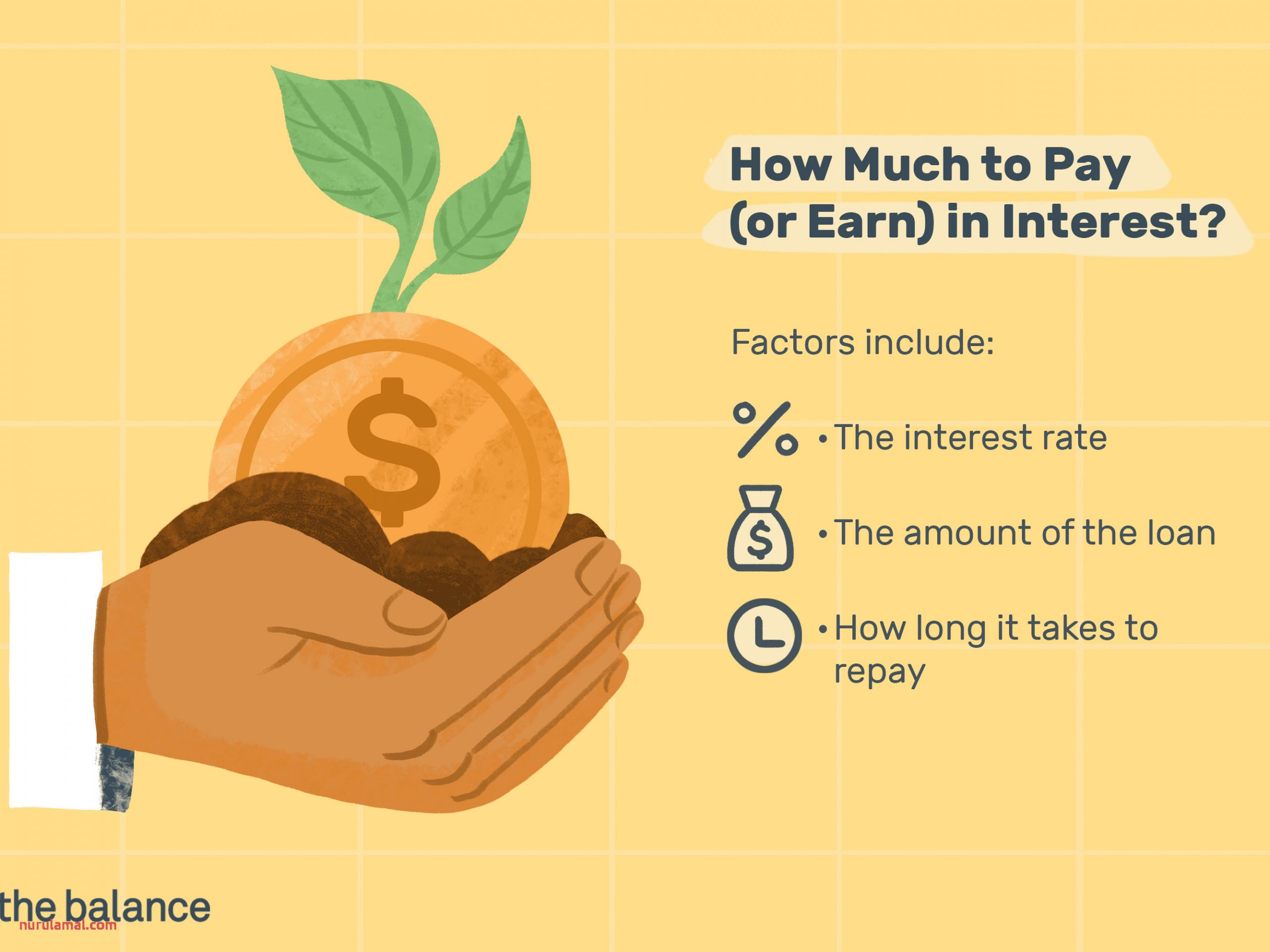 What is Interest and How Does It Work