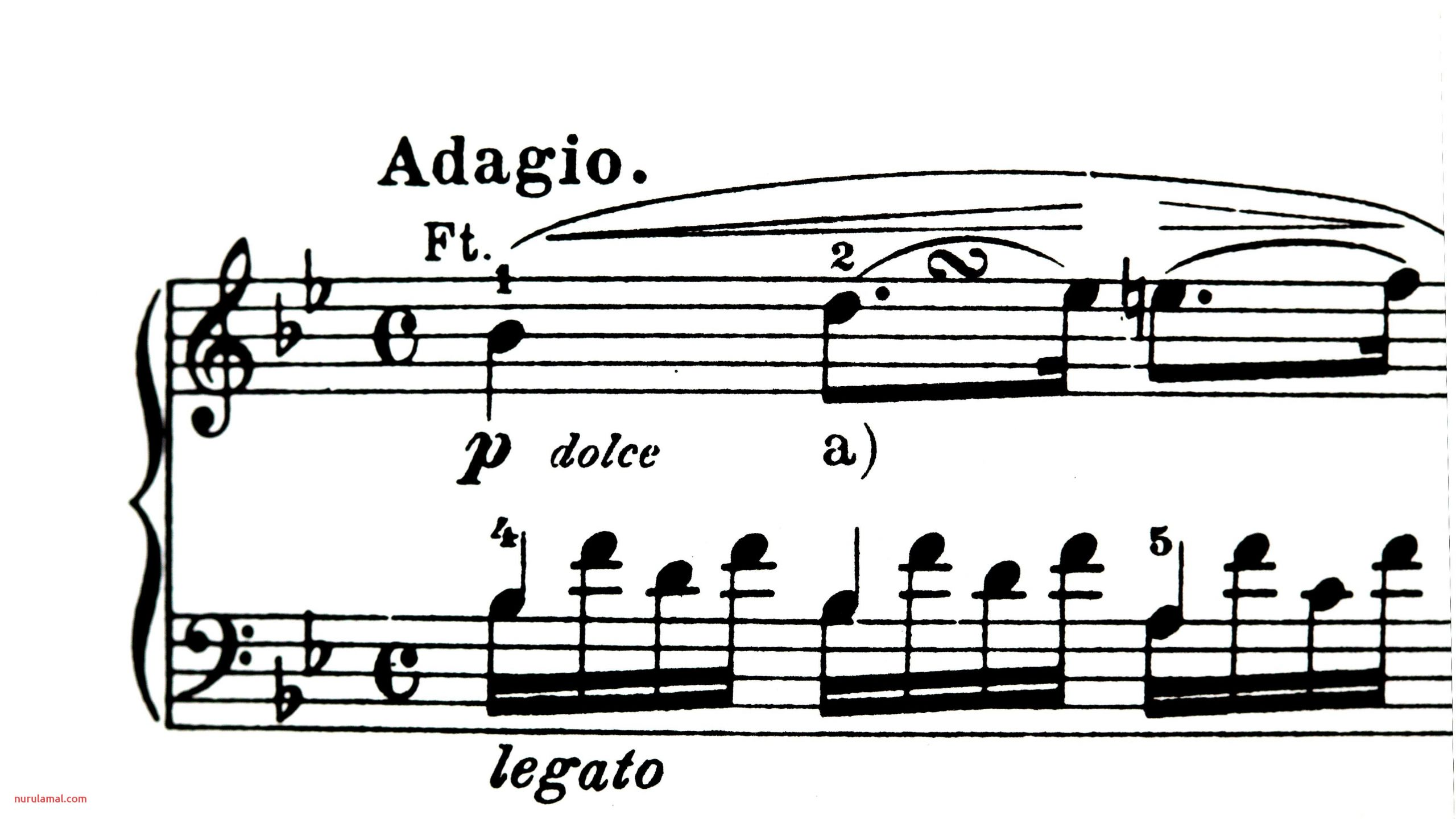 What is Tempo In Music and the Words that Set Tempo