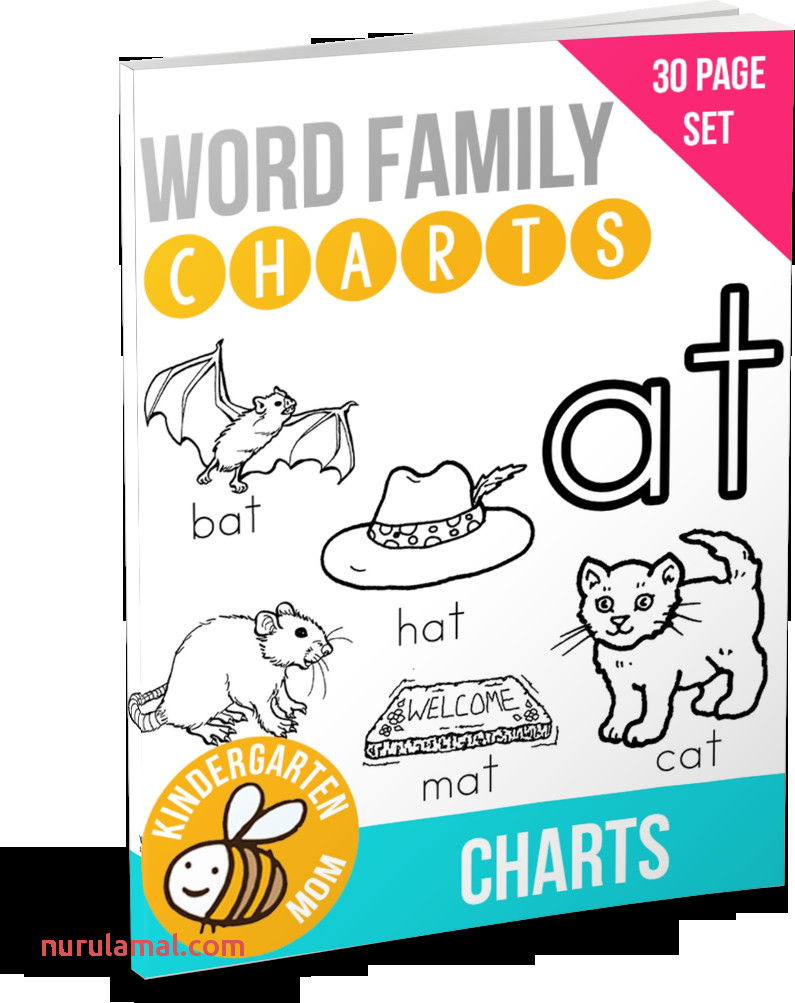 Word Family Charts Kindergarten Mom