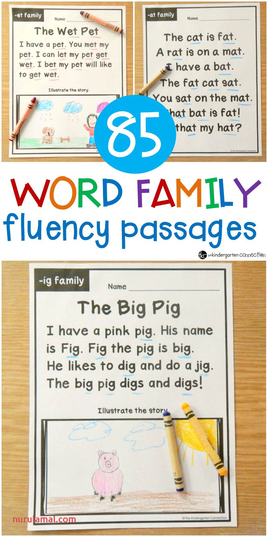 Word Family Fluency Passages for Early Readers In Kindergarten